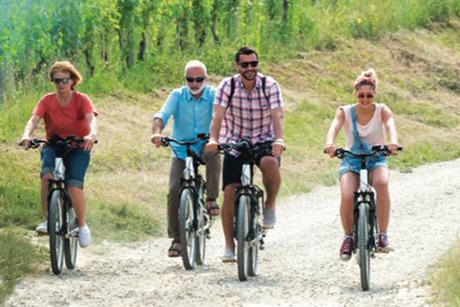 L'Excursion Pique-Nique au cœur des vignes